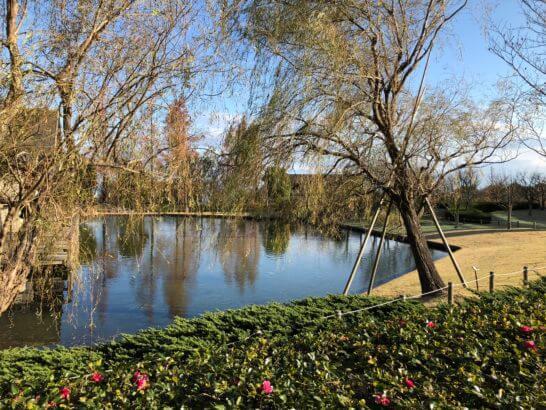 ヒルトン小田原の池