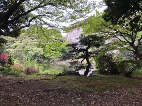 東京国立博物館の敷地内の庭園