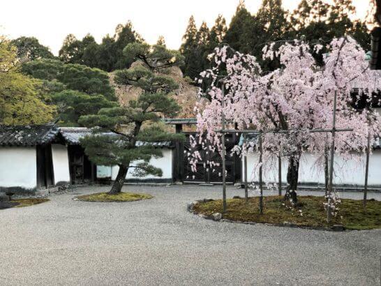 醍醐寺の庭園