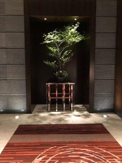 マンダリンオリエンタルホテル東京のロビーの木