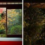 JCBが妙心寺 退蔵院 秋のお食事付き特別拝観イベントのイメージ