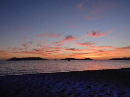 コルテス海