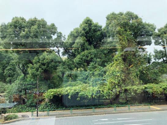 東京レストランバスからの眺め(日比谷公園)