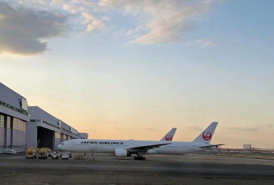 羽田空港に駐機するJALの飛行機 (4)