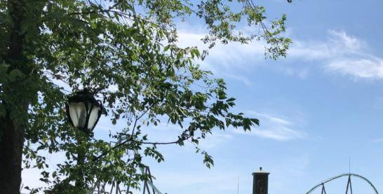 USJのパーク内の緑と青空