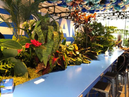 アメックスサマーサプリの店内のバルーンと観葉植物とテーブル