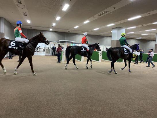 レース終了後に引き上げてくる馬たち