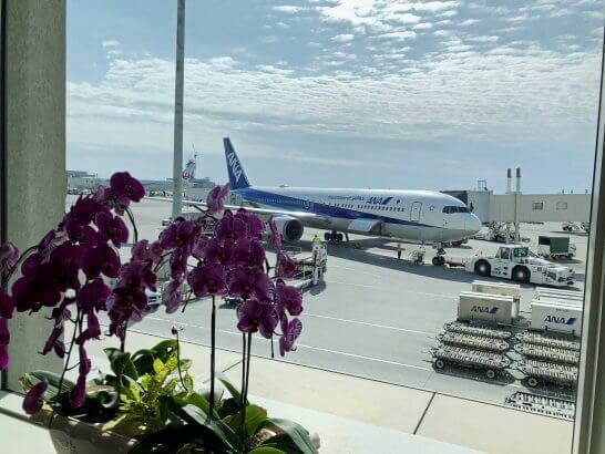 那覇空港とANAの飛行機