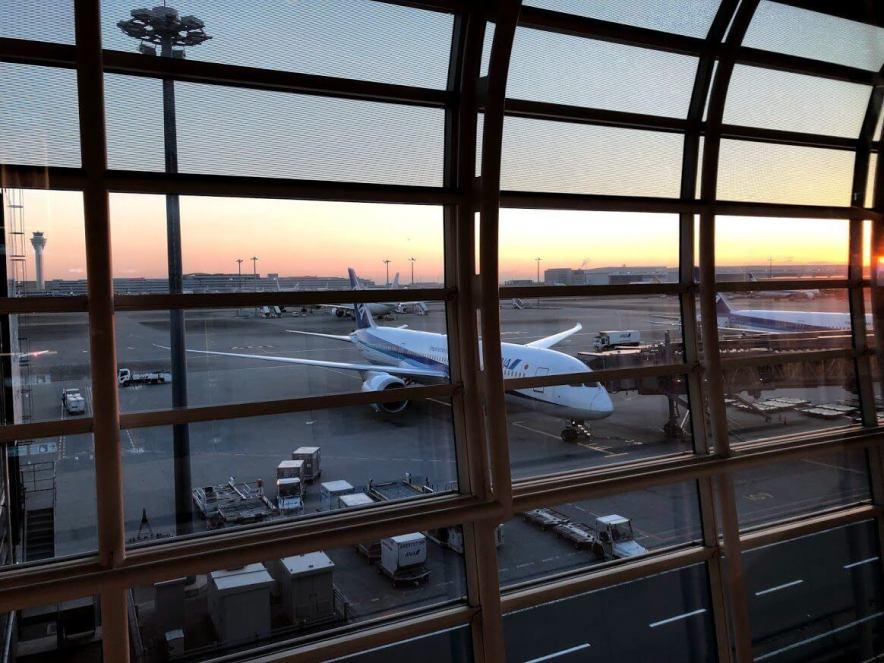 羽田空港国際線ターミナルに駐機するANA飛行機