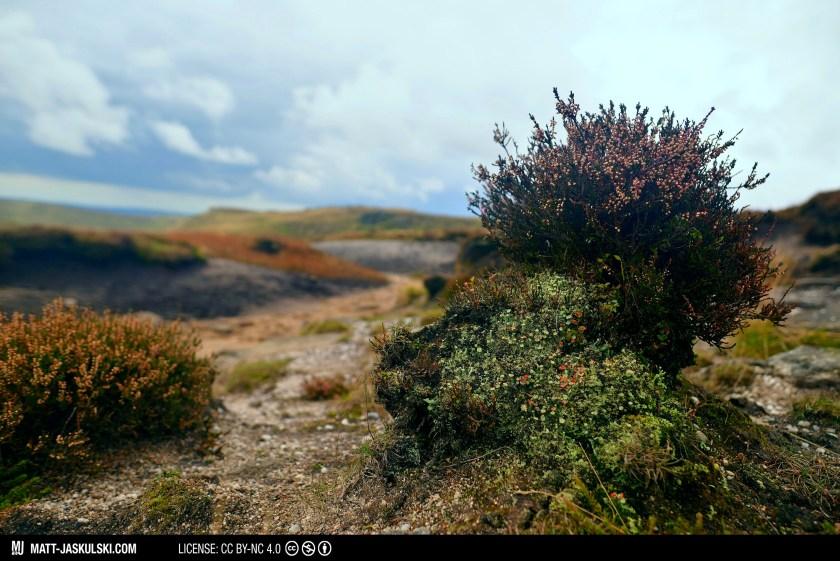 70200mm britain hiking landscape nationalpark nature Nikon peakdistrict travel uk