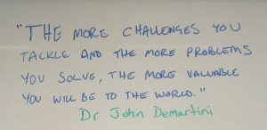 """The more challenges you tackle and the more problems you solve, the more valuable you will be to the world"" Dr John Demartini"