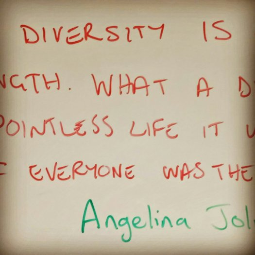 """Our diversity is our strength. What a dull and pointless life it would be if everyone was the same."" Angelina Jolie"