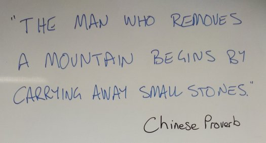 """The man who removes a mountain begins by carrying away small stones."" Chinese Proverb"