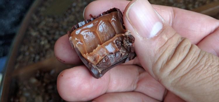 Chocolate Apothecary, Ryde