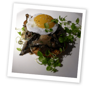 Mushroom and egg on toast