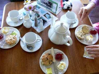 Tea and scones at Dimbola