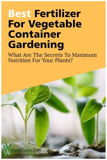 Best Fertilizer For Vegetable Container Gardening Post Graphic