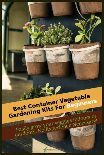 Container Vegetable Gardening Kits Post Graphic