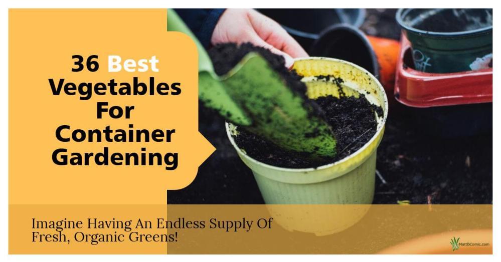 Good Vegetable Plants For Container Gardening Featured Image
