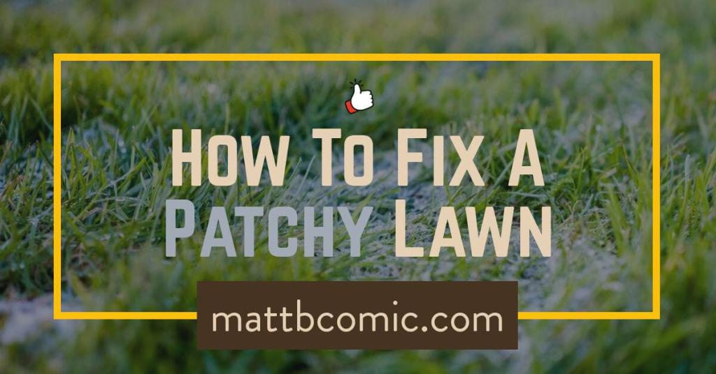 How To Fix Patchy, Weedy Lawns
