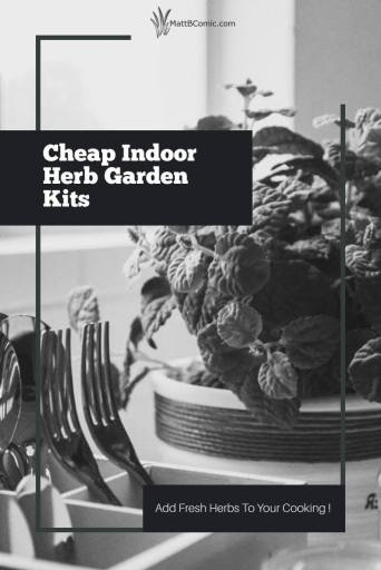 Cheap Indoor Herb Garden Kits Post Graphic
