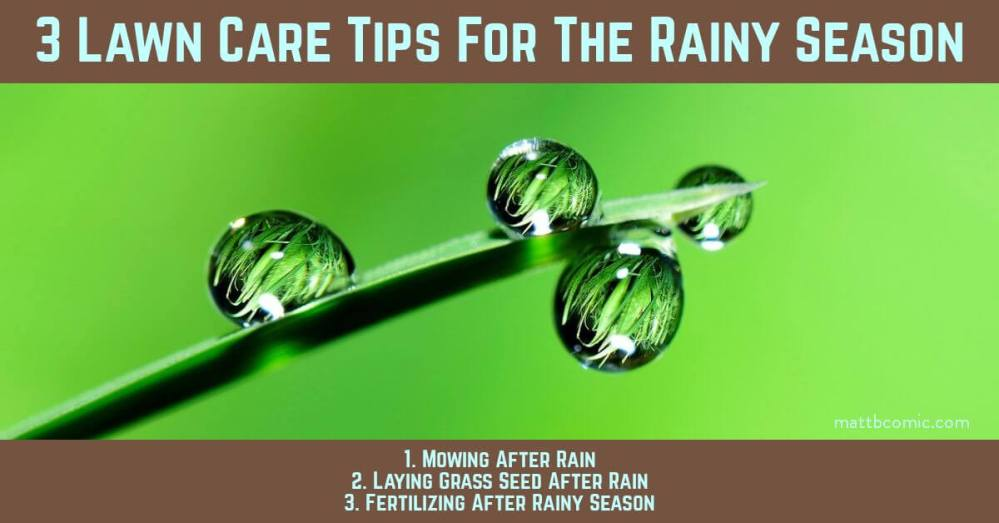 Lawn Care For The Rainy Season