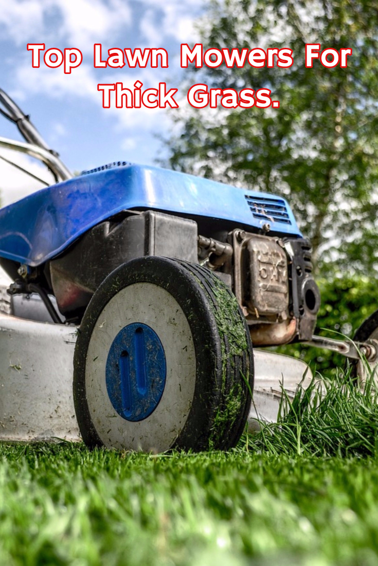 Best Lawn Mower For Thick Grass