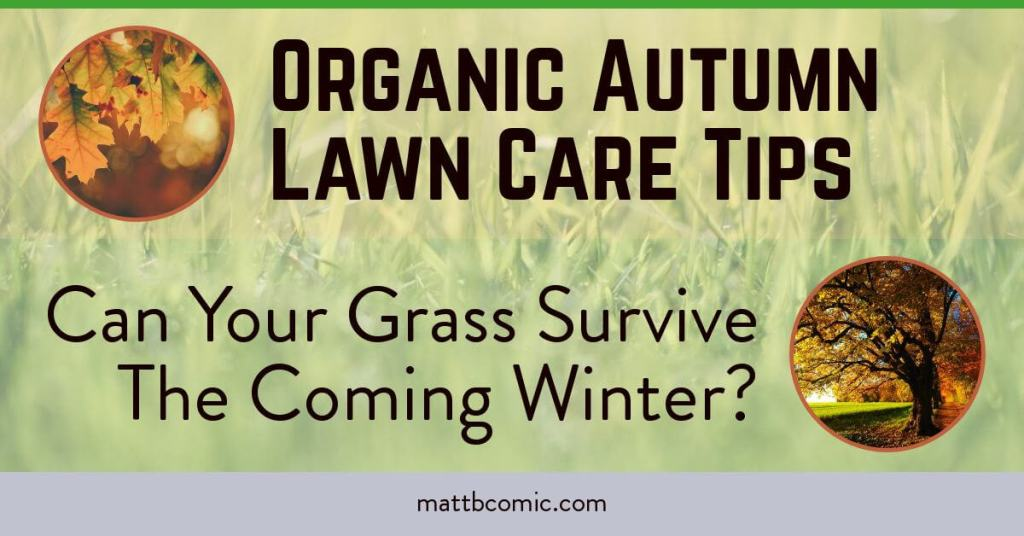 Organic Autumn Lawn Care Tips