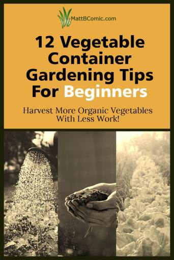 Organic Vegetable Container Gardening Tips For Beginners Post Graphic