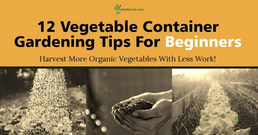 Organic Vegetable Container Gardening Tips For Beginners Featured Image