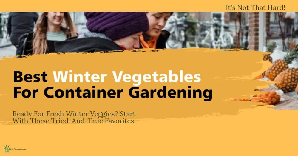 Winter Container Vegetable Gardening Featured Image
