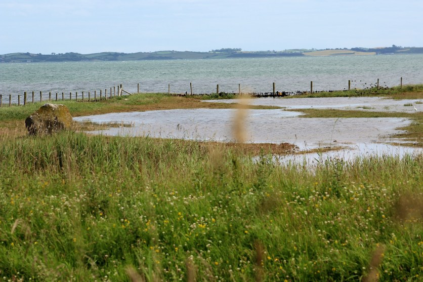 Salt marsh in the foreground.