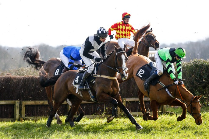 Horse 12 falling at the first fence. The Kent Grand National. Charing Racecourse