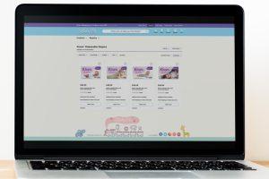 Retail Website 1