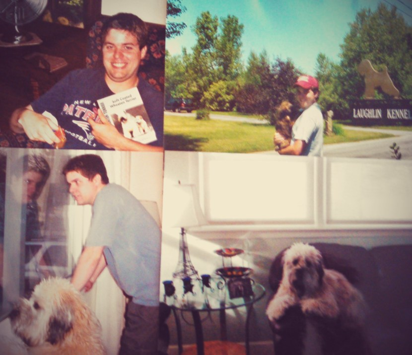 Happy Birthday Ted - The story of how Matt got Ted is chronicled in Matt Cavallo's memoir, The Dog Story: A Journey into a New Life with Multiple Sclerosis.