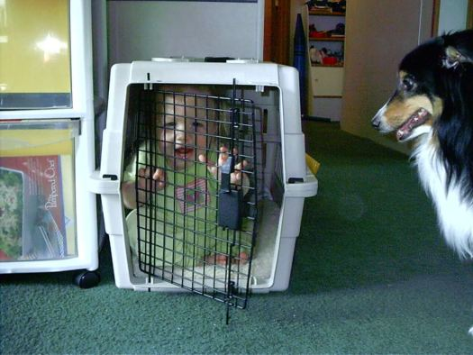 Aly in Diego's dog crate