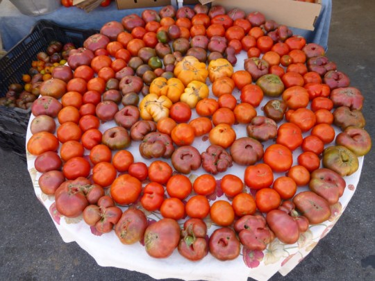 Serendipity Farms heirloom tomatoes