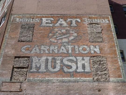 Carnation Mush