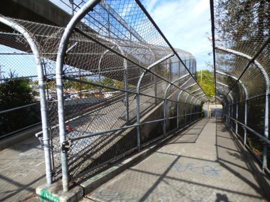 Petauma pedestrian overpass