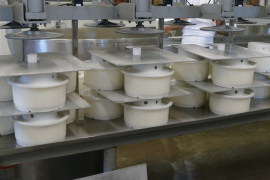 The molds ready for pressing