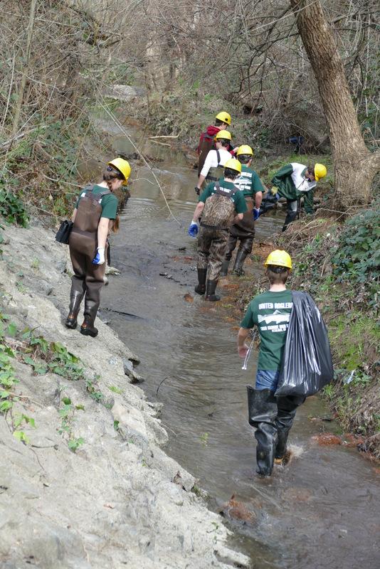 Lynch Creek cleaning