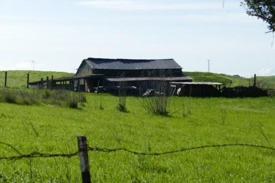 Sonoma Mountain derelict