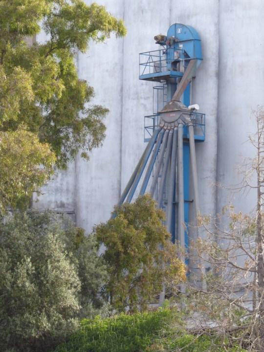 Petaluma mill