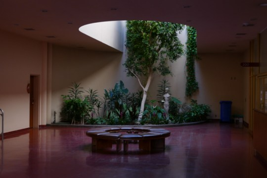 Marin County Civic Center - interior landscaping
