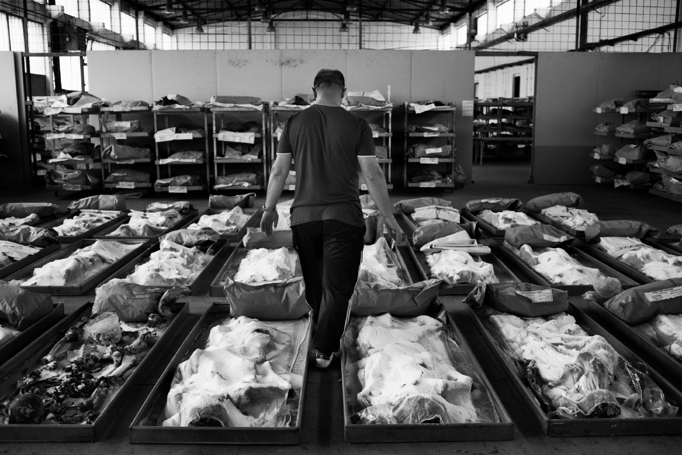 A member of Krajina Identification Project walks between the corpses inside the morgue. The 435 victims were found in Tomasica, one of the largest mass graves ever discovered in Bosnia. It turned out that 270 of the skeletons were incomplete of limbs or skulls. The bodies are not very decomposed, due to the clay composition in the soil in which they were hidden and buried by Bosnian Serbs more then 20 years ago. Sanski Most, Bosnia and Herzegovina, 2014. © Matteo Bastianelli