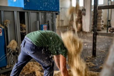 A worker picks up hemp fibre from the floor at an industrial hemp processing center. Crispiano (Taranto), Italy 2016. © Matteo Bastianelli
