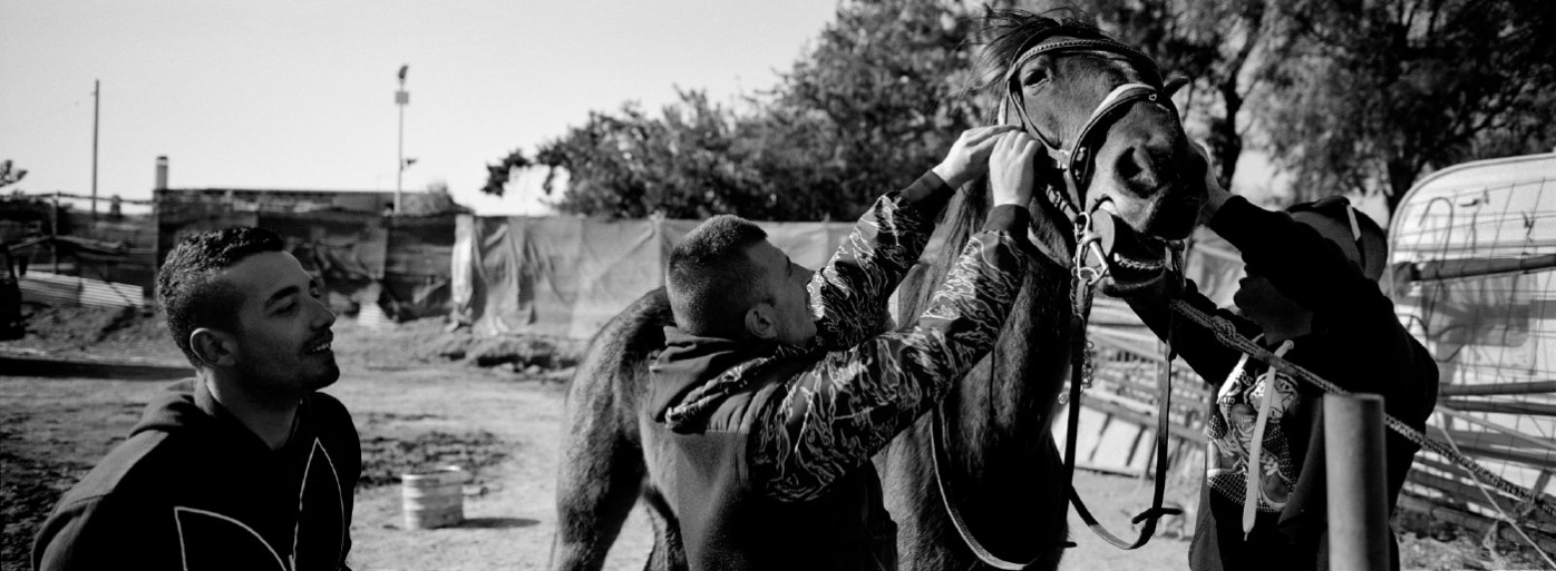 Some youths bridling a horse at the Molentargius-Saline Regional Park. The Park, established in 1999, covers a territory of about 1600 hectares and includes nature trails with horse riding, bird-watching and sport. Cagliari, Italy 2015. © Matteo Bastianelli