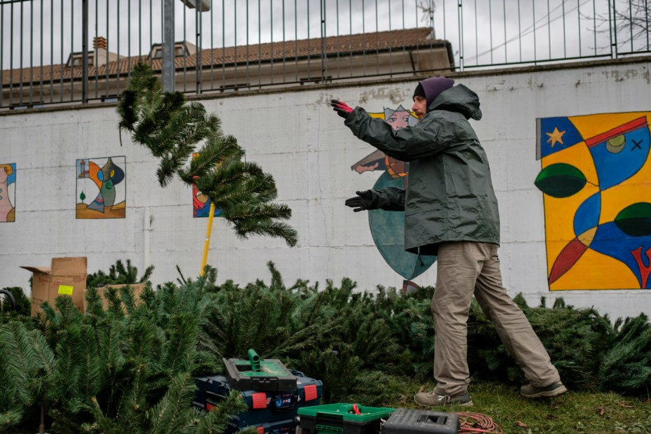 A man is seen busy preparing a Christmas tree at the municipal park of P.G. Minozzi. Amatrice, Italy 2016. © Matteo Bastianelli