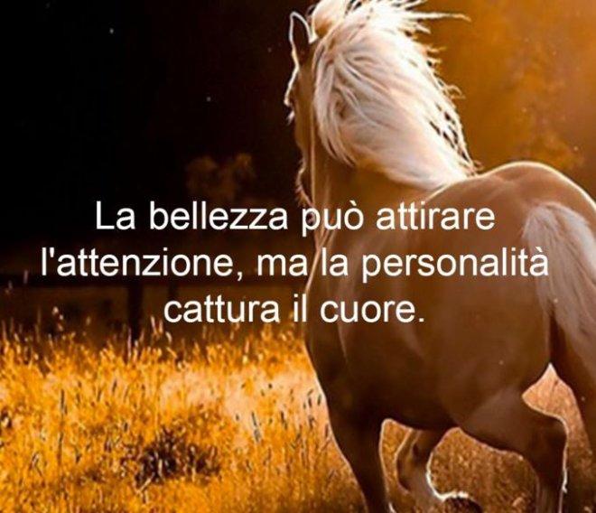Cavallo con una forte personalità