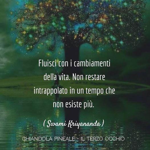 Frase di Swami Kriyananda